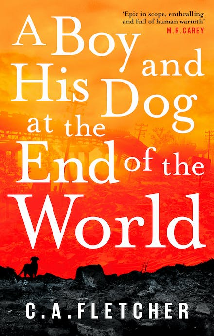 Image result for a boy and his dog at the end of the world