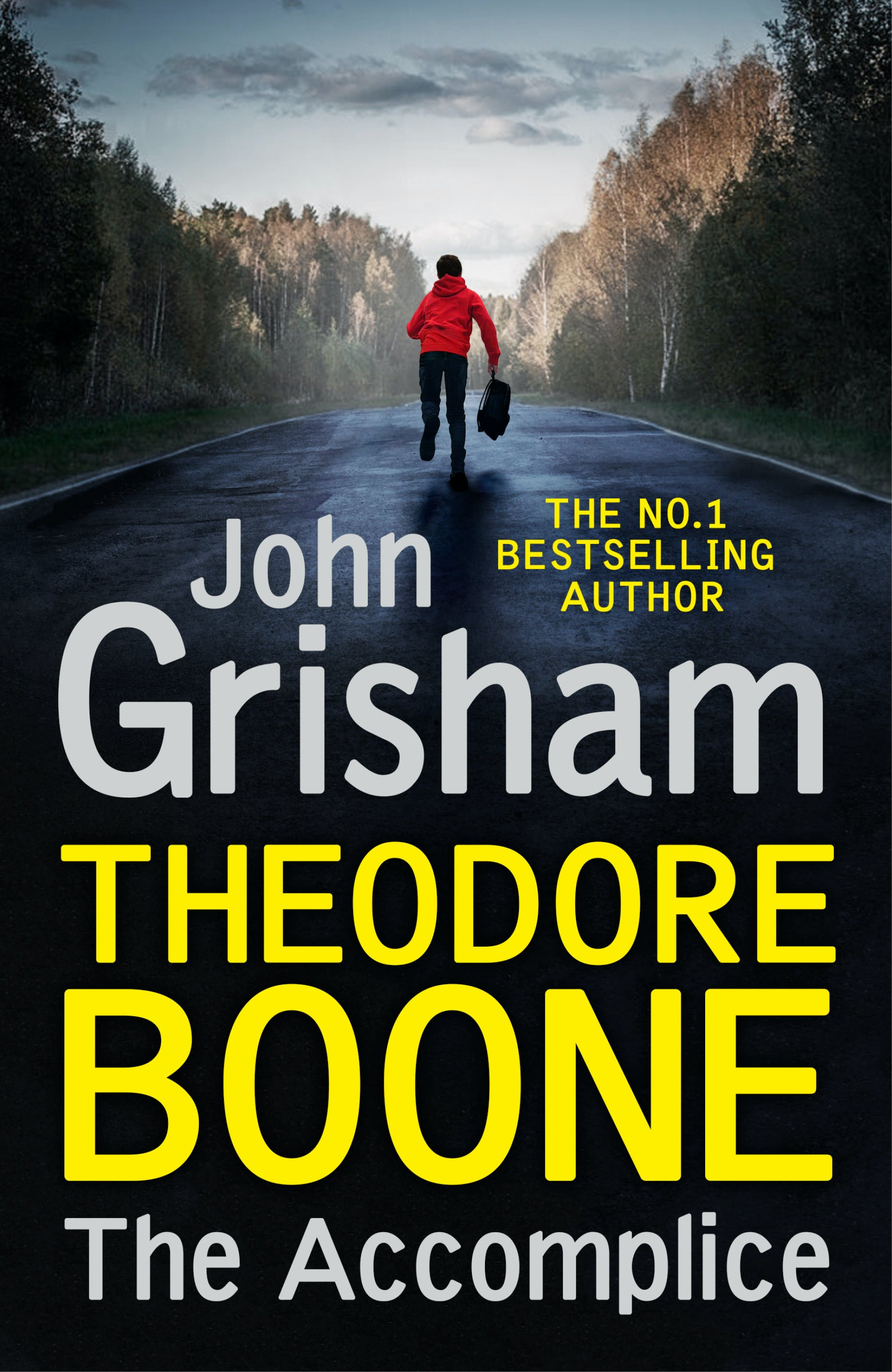 Theodore Boone: The Accomplice: Theodore Boone 7 by John