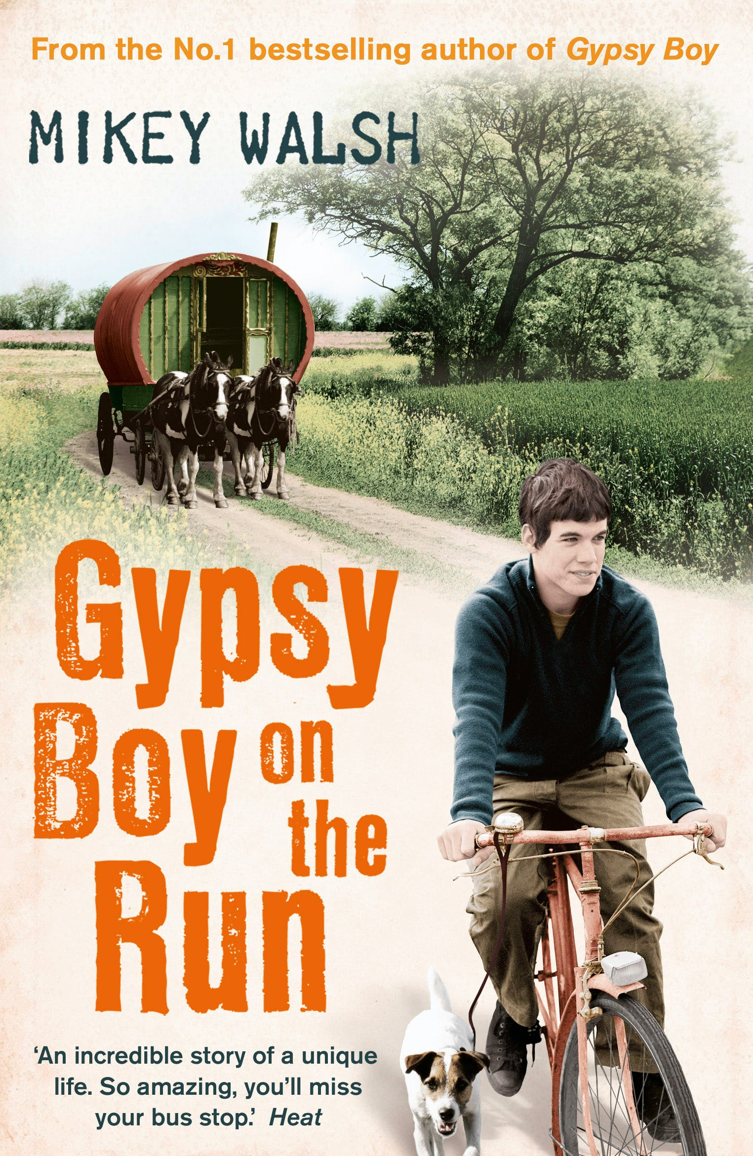 Gypsy Boy on the Run by Mikey Walsh - Books - Hachette Australia